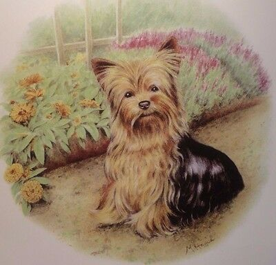 Ceramic Decal    Plate      190mm diam.   Yorkie