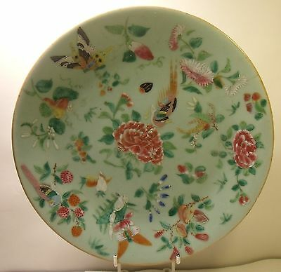 "19th Century Chinese Celadon Famille Rose 10"" Plate Butterflies And Bird (2)"