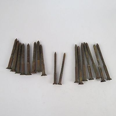 Lot of  17 Vintage Solid Brass Flat Head Slotted Screws Various Sizes up to 3""