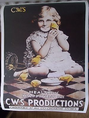 Poster Of Cws Advert N0 3