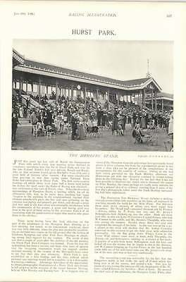1896 Horse Race Hurst Park Members Stand Round The Sale Ring