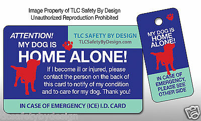 DOG EMERGENCY ICE CARD Pet Home Alone Alert I.D. Contact Plastic Card & Key Tag