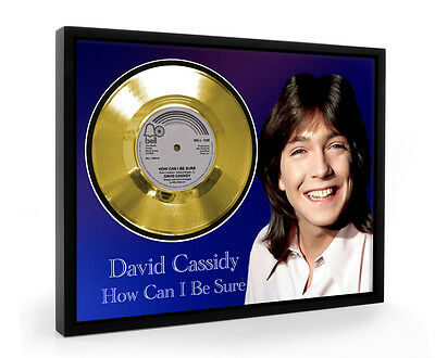 David Cassidy How Can I Be Sure Framed Gold Disc Display Vinyl (C1)