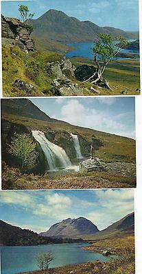Ross-Shire postcards (3)