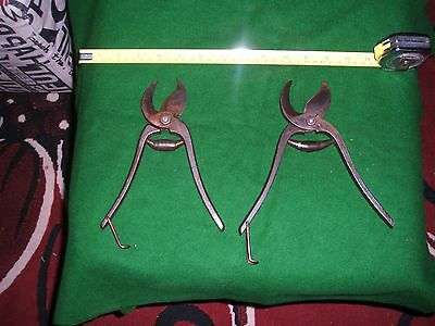 2 Pairs Of  Vintage Secateurs  Excellent Condition Cleaned And Oiled x 2