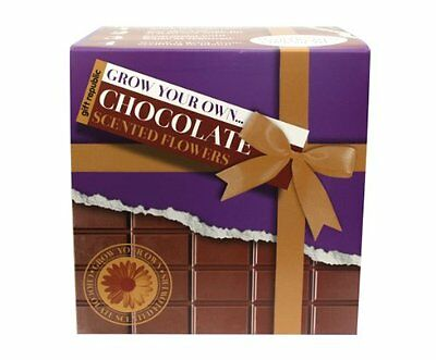 Gift Republic Ltd Gift Republic Grow Your Own Chocolate Flowers