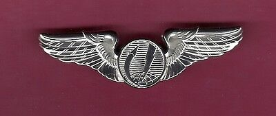 Genuine full size US Remote Pilot Aircraft Drone Wings Badge USAF