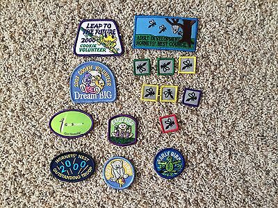 Girl Scout Hornet's Nest Cookie Patches Charlotte NC
