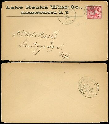 1894 CATAWBA NY CDS, LAKE KEUKA WINE CO. HAMMONDSPORT NY, Advert Cover, SC #220!