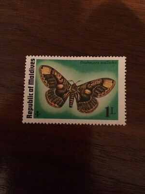 Stamp Maldives - Butterfly - Unfranked