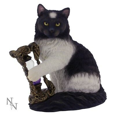 Time's Up Statuette - Lisa Parker - Witches Cat Ornament Hourglass Times 16.2cm