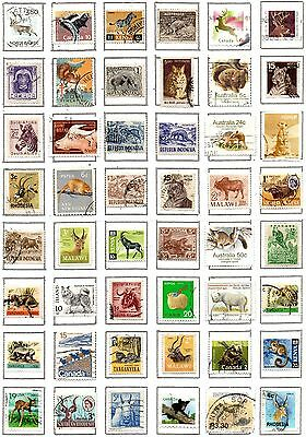 WORLD 48 Animals on Stamps on page.