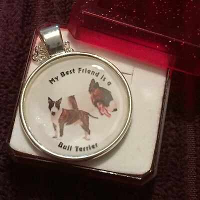 English BULL TERRIER NECKLACE ... Dog  ~ PLASTIC Coated ~ GIFT BOXED