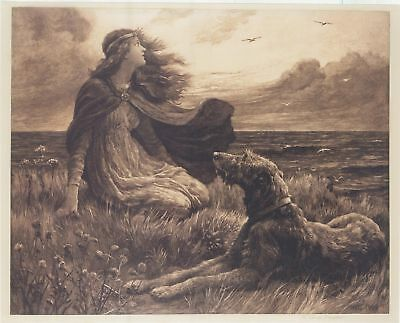 Scottish Deerhound print, The Viking Daughter