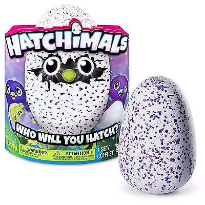 Hatchimals Interactive Hatching Egg Blue/purple Draggle Brand New Free Shipping