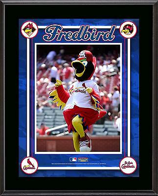St. Louis Cardinals Mascot Sublimated 10.5'' x 13'' Plaque