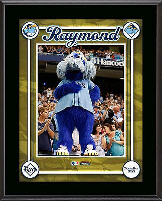 "Tampa Bay Rays Mascot Sublimated 10.5"" x 13"" Plaque"