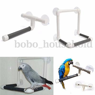 2 Style Pet Parrot Bird Perches Wall Suction Cup Toys Paw Grind Shower Stand