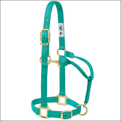 Weaver Nylon Heat Sealed Buckle Halter Adjustable Small Horse Emerald Green