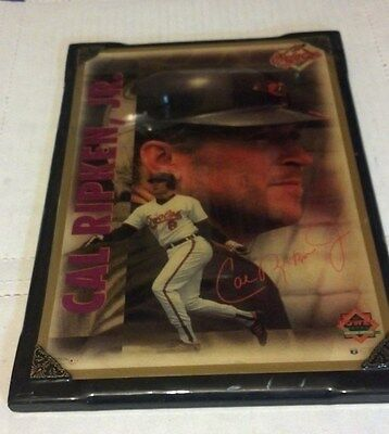 "Cal Ripken Jr. Plaque Framed 14"" by 10"" Replica Signature Costacos Brothers Hang"