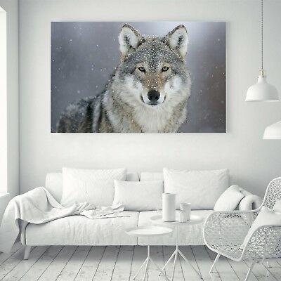 Abstract Wolf Animal Silk Canvas Poster Nordic Art Painting Wall Decor A215