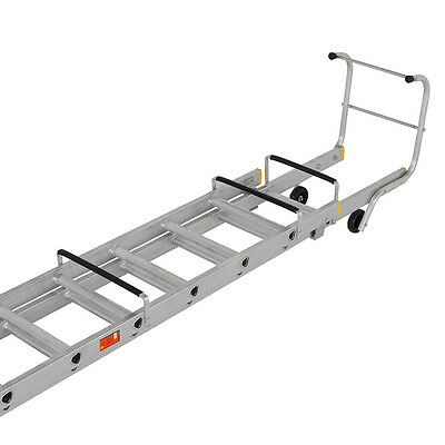 Roof Ladder Single Section 4.2mtr  T B Davies 1305-000