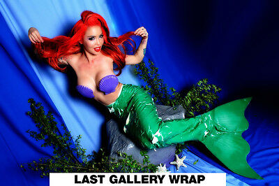 Signed Gallery Wrapped Canvas Art Print Masuimi Max Pin Up/Fetish Model Mermaid