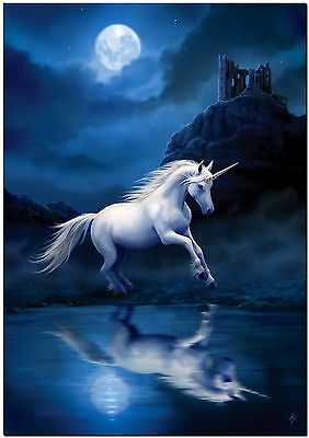 Beautiful Unicorn in Moonlight Horse Canvas Print Poster 24X16""
