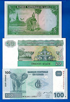 8 Elephants From 8 Different Countries Uncirculated Banknotes