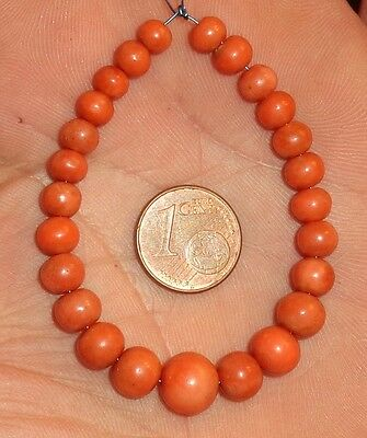 8,5mm Perle Corail Ancien Collier Antique Victorian Natural Coral Bead Necklace