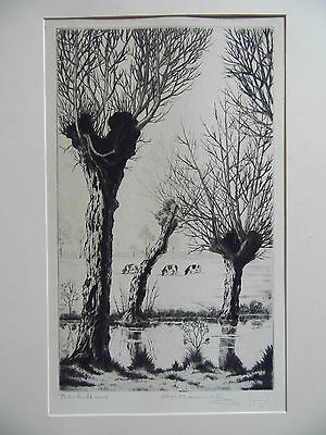 The Willows Landscape Listed Alice Barnwell, Signed etching, artist's proof.