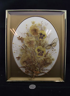 Stunning 3D Dried  Dried Flower Arrangement Dragonfly Pansy ? Framed 9X11