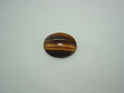 Large Oval Shaped Tiger Eye Cabochon Loose Gemstone