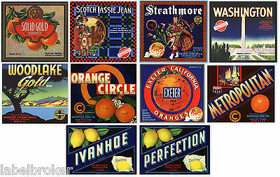 10 Crate Labels Vintage Lot Tulare County Woodlake Exeter Strathmore Ivanhoe
