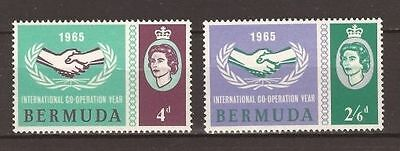Bermuda 1965 ICY MH