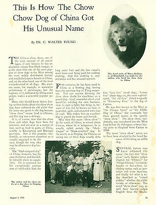 Dog Breed Article w Pics 1935 Chow Chow Breed American Article by Young SCARCE