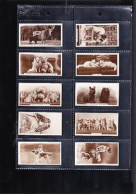 cigarette cards animal studies 1936 full set