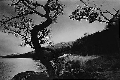 Jeanloup Sieff Limited Edition Photo Heliogravure 24x31 Loch Lomond Écosse 1972