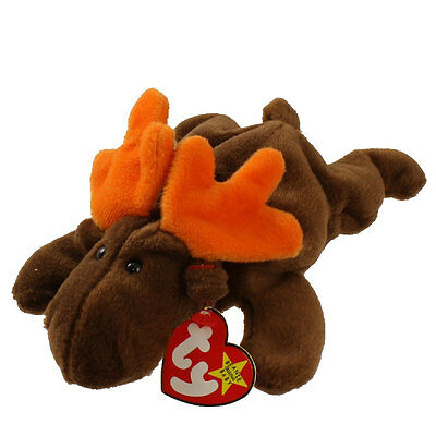TY Beanie Baby - CHOCOLATE the Moose (9 inch) Mint w/ Tags 1993