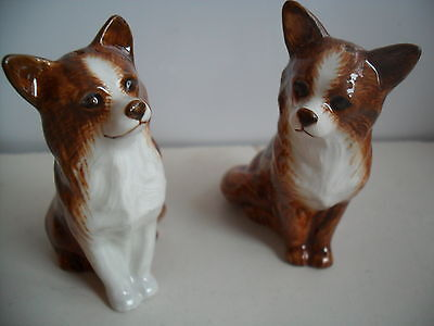Unusual Chihuahua  Ceramic Salt And Pepper Pots By Quail Pottery  Boxed