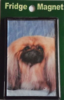 Pekingese Fridge Magnet