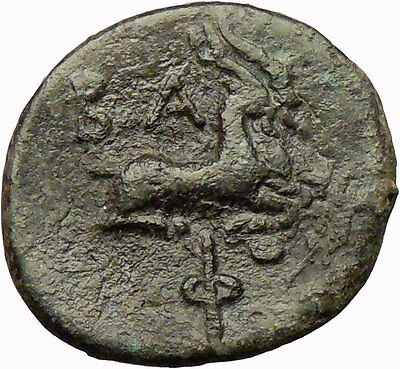PHILIP V Macedonia King 221BC HERCULES Goats RARE R1 Ancient Greek Coin i28931