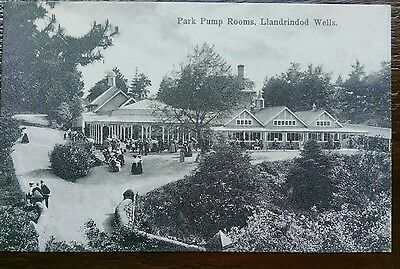 Llandrindod Wells Park Pump Rooms Whs Postcard
