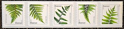 2015 date #4973a-4977a 4977c #S1111 Forever Ferns PNC5 Strip of 5 MNH APS LIFE