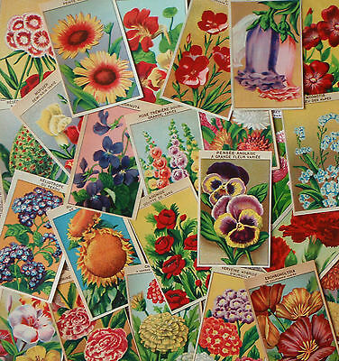 1920's Original Vintage French FLOWER SEED PACKET LABELS 72 different labels