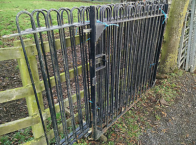 Iron Garden Gates and Railings