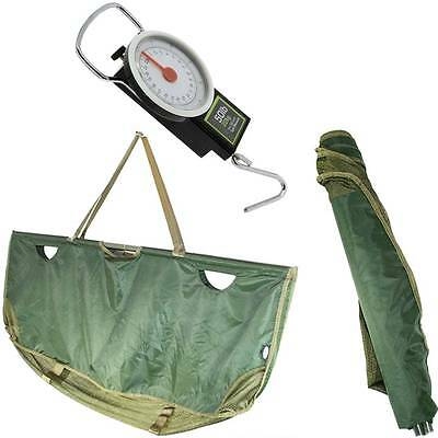 Ngt 350 Quick Folding Weighing Sling In Case + 50Lb 22Kg Scales For Carp Fishing