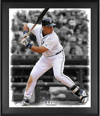 "Miguel Cabrera Detroit Tigers Framed 20"" x 24"" In the Zone Photograph"