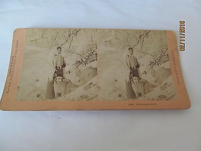 Victorian Stereoview Schneider And I Lovely Dog Dated 1889