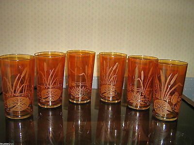 6 CARNIVAL GLASS Marigold WATERLILY WATER LILY LILIES Tumblers Glasses Cattail